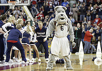 20 December 2008:  Gonzaga Bulldogs mascot Spike pumps up the crowed during a timeout against the Connecticut Huskies at Key Arena in Seattle, WA.  Connecticut won  88-83  over Gonzaga in the Comcast Battle in Seattle.