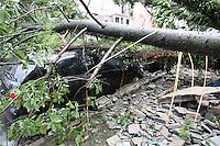 SAO PAULO, SP, 18-02-2013, CHUVA, ALAGAMENTO E QUEDAS DE ARVORES.  Sao Paulo teva na tarde dessa Segunda-feira uma tarde de caus. Uma frte tempestade caiu sobre toda cidade. Na foto duas arvores de uma escola que cairam sobre o muro e atingiram tres veiculos proximo a Rua do Orfanato na V. Prudente.  Luiz Guarnieri/ Brazil Photo Press.
