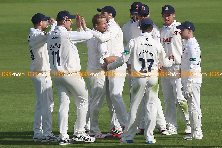 Neil Wagner of Essex celebrates taking the wicket of Lewis Gregory during Somerset CCC vs Essex CCC, Specsavers County Championship Division 1 Cricket at The Cooper Associates County Ground on 15th April 2017