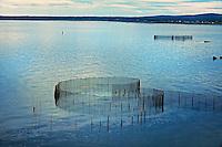 Fish farming<br /> Grand Manan Island<br /> New Brunswick<br /> Canada