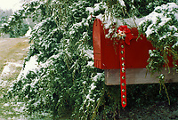 Mailbox decorated for Christmas with bows and bells, Midwest USA
