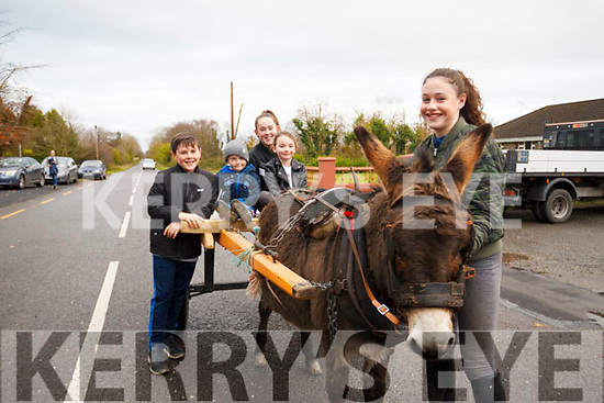Tara O'Connor with her donkey gives Clodagh and Mark Chawke along with Killian & Hannagh Walse a slow jaunt during the Steam Threshing Machine exhibition in Ballymac on Sunday last in aid of Kerry Hospice and the Alzheimers Society.
