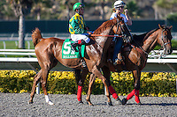 August 26, 2012. Dullahan and Joel Rosario win the Pacific Classic(GI) at Del Mar Thoroughbred Club in Del Mar, CA..