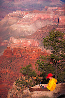 A young woman sits on the edge of the Grand Canyon with a laptop.