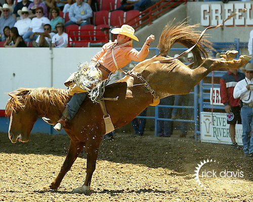 Kaycee Field scores an 86 point bareback ride on the Beutler & Son bronc South Point to win short go action at the Greeley Independence Stampede Rodeo on July 4, 2008.