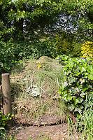 Komposthaufen, Kompost-Haufen, Kompost, Humus, Kompostieren, Kompostierung, Rotte, Gartenabfälle im Garten, Naturgarten, compost heaps, compost, humus, composting, garden rubbish in the garden