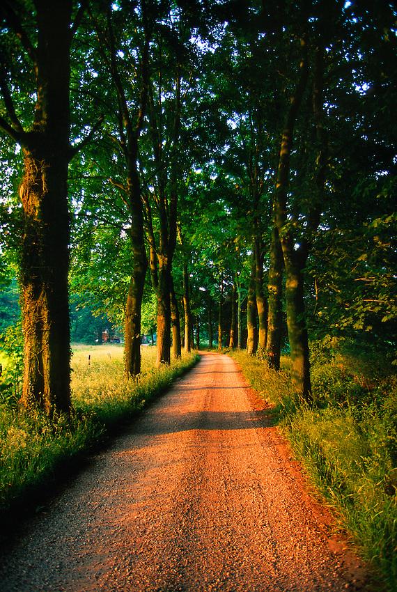 Dutch countryside, Kring van Dorth, near Deventer, the Netherlands