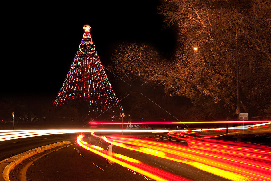 Car lights trails in front of the Zilker Christmas Tree on Barton Springs Road in Zilker Park in Austin, Texas
