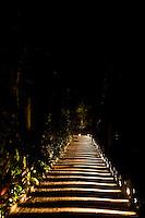 Brumadinho_MG, Brasil...Jardim do Centro de Arte Contemporanea Inhotim (CACI) a noite, no Festival Gastronomico Sabor e Saber...The garden in Inhotim Contemporary Art Center (CACI) at night, in Gastronomy Festival Sabor e Saber...Foto: BRUNO MAGALHAES / NITRO.