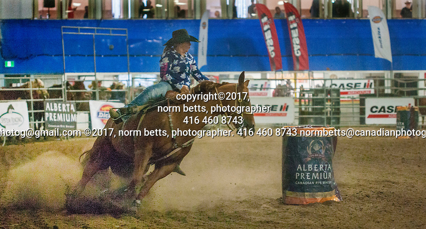 New Tecumseth- Mayor's Charity Rodeo in Alliston, Ontario, Canada, Saturday and Sunday Sept 9th and 10th<br /> photos by Norm Betts<br /> <br /> Sponsored by Mayor Rick Milne, to raise scholarship funds for local students.<br /> <br /> normbetts@canadianphotographer.com<br /> &copy;2017, Norm Betts, photographer<br /> 416 460 8743 New Tecumseth- Mayor's Charity Rodeo in Alliston, Ontario, Canada, Saturday and Sunday Sept 9th and 10th<br />