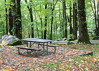 Stock photo: Picnic bench surrounded by autumn leaves fallen on ground in the forest of the smoky mountain national park,