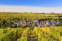 France, Cher (18), région du Berry, région du Sancerrois, Sury-en-Vaux et le vignoble Sancerre AOC en automne // France, Cher, Sancerrois region, Sury-en-Vaux, the village and the  Sancerre AOC vineyard fall