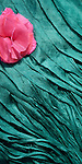 Pink Flower Blue Silk 03 - Turquoise blue layered silk shawl and pink silk flower.