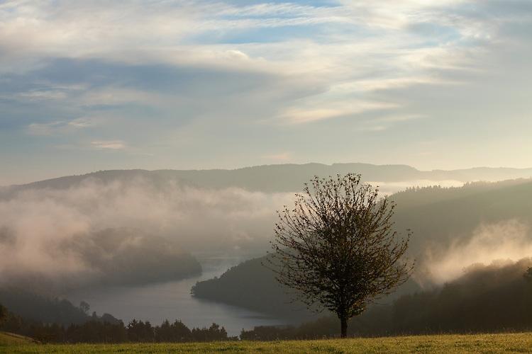 Europa, DEU, Deutschland, Nordrhein Westfalen, NRW, Eifel, Rureifel, Nationalpark Eifel, Rurtalsperre Schwammenauel, Rursee, Rurstausee , Der durch die Rurtalsperre Schwammenauel aufgestaute Rurstausee ist mit 203,2 Mio. Kubikmeter Stauraum der volumenmaeßig zweitgroeßte Stausee Deutschlands. Aeus dem Obersee (Rur) wird sogenanntes Rohwasser zur Trinkwasseraufbereitung entnommen., Kategorien und Themen, Natur, Umwelt, Landschaft, Jahreszeiten, Stimmungen, Landschaftsfotografie, Landschaften, Landschaftsphoto, Landschaftsphotographie, Wetter, Wetterelemente, Wetterlage, Wetterkunde, Witterung, Witterungsbedingungen, Wettererscheinungen, Meteorologie, Wettervorhersage....[Fuer die Nutzung gelten die jeweils gueltigen Allgemeinen Liefer-und Geschaeftsbedingungen. Nutzung nur gegen Verwendungsmeldung und Nachweis. Download der AGB unter http://www.image-box.com oder werden auf Anfrage zugesendet. Freigabe ist vorher erforderlich. Jede Nutzung des Fotos ist honorarpflichtig gemaess derzeit gueltiger MFM Liste - Kontakt, Uwe Schmid-Fotografie, Duisburg, Tel. (+49).2065.677997, archiv@image-box.com, www.image-box.com]