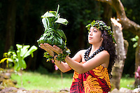 Young hula dancer with ti leaf offering.