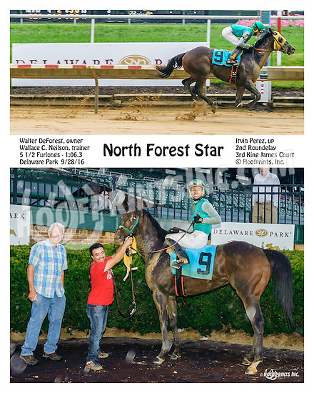 North Forest Star winning at Delaware Park on 9/28/16