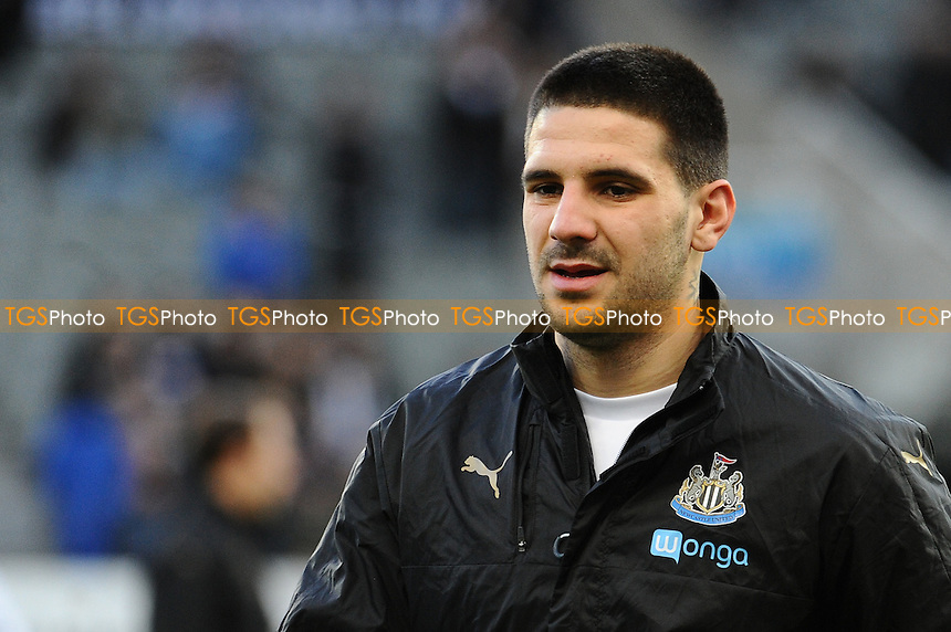 Aleksandar Mitrovic of Newcastle United during Newcastle United vs Derby County, Sky Bet EFL Championship Football at St. James' Park on 4th February 2017
