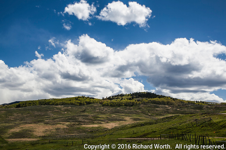 Green rolling hill under blue skies and fluffy clouds between Montrose, Colorado and Blue Mesa.