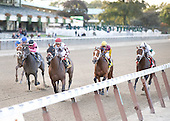 Homeboykris wins the $400,000 Champagne Stakes at Belmont Park on Saturday, Oct. 10, 2009. Homeboykris, owned by Louis Lazzinaro and trained by Rick Dutrow, defeated favored Dublin, winners of the Hopeful Stakes at Saratoga. Discreetly Mine was second.