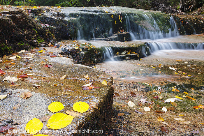 Ledge Brook during the autumn months in the White Mountains, New Hampshire USA. This brook is located of the Kancamagus Scenic Byway, which is one of New England's scenic byways.