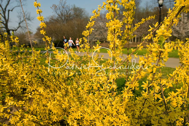 Visitors enjoy the flowering trees in Freedom Park in Charlotte, NC.