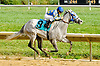 Blue Angel Express winning at Delaware Park on 10/3/12