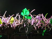 RIO DE JANEIRO, RJ, 05 FEVEREIRO DE 2012 - CARNAVAL 2012 RJ - ENSAIO ESTACAO PRIMEIRA DE MANGUEIRA - Integrantes da escola de samba, Estacao Primeira de Mangueira, na noite de ontem domingo, 05 na Marques de Sapucai, no Rio de Janeiro. (FOTO: RONALDO BRANDAO - NEWS FREE).