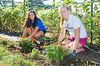 Alexandra Harkness,'20, and Olivia Alcott,'20, rakes weeds around the flower beds at the Methodist Community Gardens in Middletown while taking part in the Salve Regina Service Plunge.