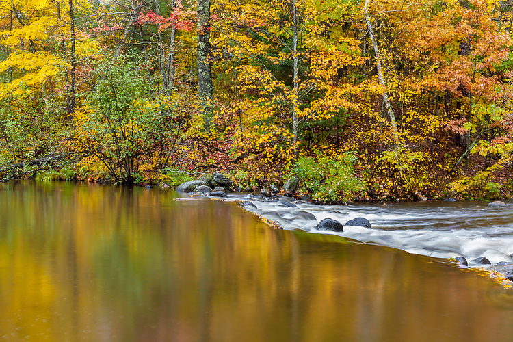 Fall color along the Manitowish River; Northern Highland-American Legion State Forest. WI