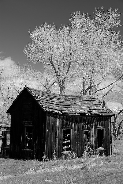 Cabin just off Highway #395 Eastern Sierra, CA