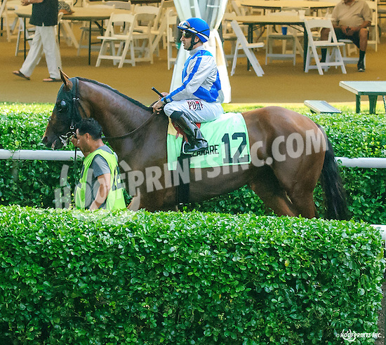 Arraign before The Christiana Stakes at Delaware Park on 7/6/16