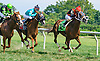Intrepid Alex #12 and La Bruna Forte #11 both winning in a dead heat at Delaware Park on 9/5/16