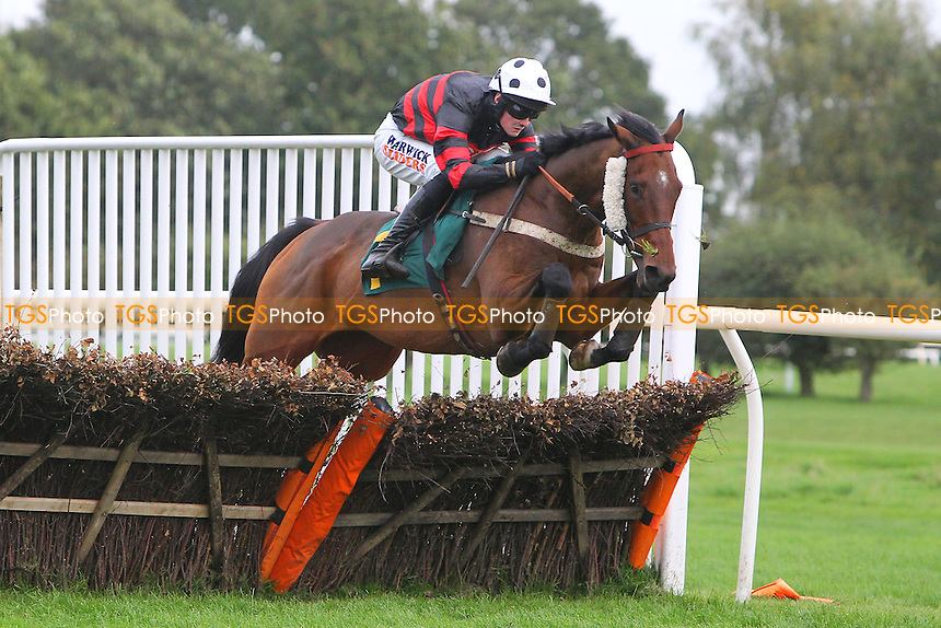 Monroe Park ridden by Jack Quinlan in jumping action during the Pudding Norton Conditional Jockeys Selling Handicap Hurdle - National Hunt Horse Racing at Fakenham Racecourse, Norfolk - 25/10/13 - MANDATORY CREDIT: Gavin Ellis/TGSPHOTO - Self billing applies where appropriate - 0845 094 6026 - contact@tgsphoto.co.uk - NO UNPAID USE