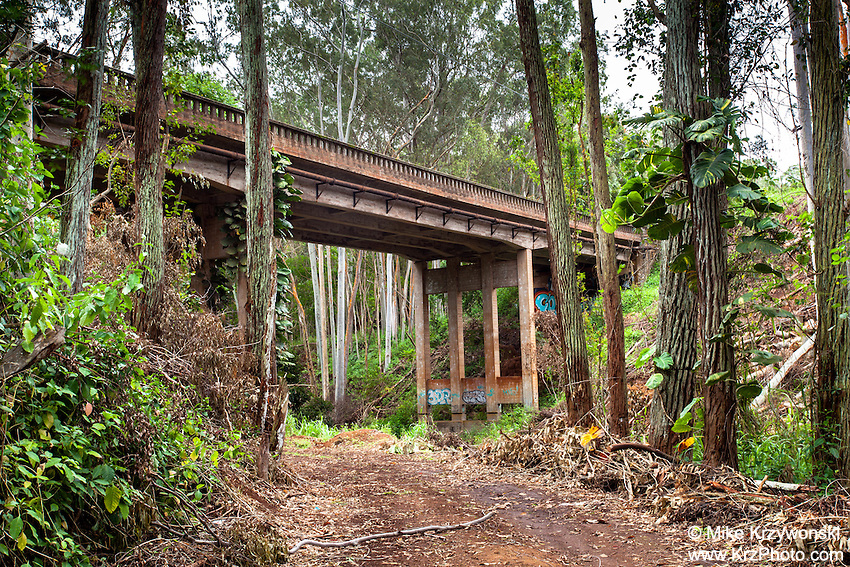 View of Wilikina Bridge crossing over a dirt road with trees near Schofield Barracks Army Base, Oahu
