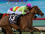 December 2 2018:  #13 Uni, ridden by Joel Rosario, passes #7 Daddy Is A Legend, ridden by Manuel Franco, in the stretch of the Matriarch Stakes (Grade l), on December 2, 2018, at Del Mar Thoroughbred Club in Del Mar, CA(Photo by Casey Phillips/Eclipse Sportswire/CSM