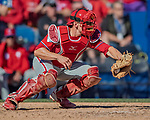 6 March 2019: Philadelphia Phillies catcher Rob Brantly in action during a Spring Training game against the Toronto Blue Jays at Dunedin Stadium in Dunedin, Florida. The Blue Jays defeated the Phillies 9-7 in Grapefruit League play. Mandatory Credit: Ed Wolfstein Photo *** RAW (NEF) Image File Available ***