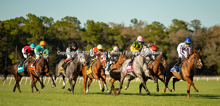 February 8, 2020: The field of 9 crosses the gap in the first pass of the Grade III Tampa Bay Stakes on February 8, 2020 in Tampa, FL. (Photo by Carson Dennis/Eclipse Sportswire/CSM)