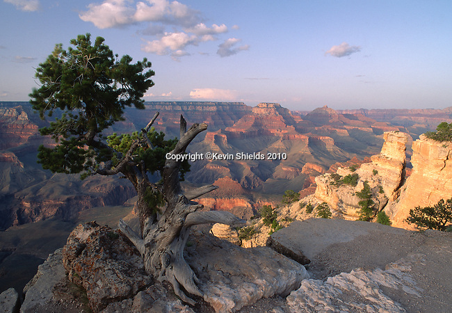 The Grand Canyon at Yaki Point, Grand Canyon National Park, Arizona, USA