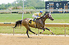 Stolen Chevy winning at Delaware Park on 5/28/12