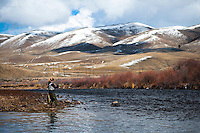 An angler targets a pod of rising fish on the Big Hole River near Melrose, Montana.
