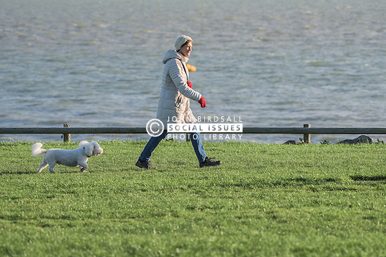 A woman walks her dog at East beach in Shoeburyness, Essex, UK.