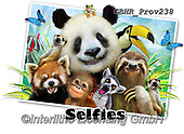 Howard, REALISTIC ANIMALS, REALISTISCHE TIERE, ANIMALES REALISTICOS, selfies, paintings+++++Zoo Selfie,GBHRPROV238,#a#, EVERYDAY ,panda