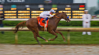 LOUISVILLE, KY - MAY 05: Justify #7, ridden by jockey Mike Smith, wins the 144th running of the Kentucky Derby during the 144th Kentucky Derby at Churchill Downs on May 5, 2018 in Louisville, Kentucky. (Photo by Sydney Serio/Eclipse Sportswire/Getty Images)
