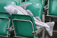 An inflatable fish sits in the stand prior to the Vanarama National League match between Eastleigh and Grimsby Town at The Silverlake Stadium, Eastleigh, Hampshire on Nov 21, 2015. (Photo: Paul Paxford/PRiME)