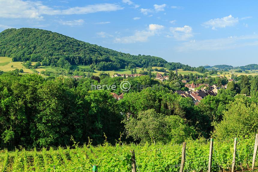 France, Jura (39), Château-Chalon, vignoble de l'appellation château-chalon (AOC) et les toits du village de Voiteur