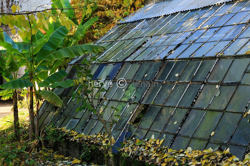 France, Allier (03), Villeneuve-sur-Allier, Arboretum de Balaine en automne, serre adossée