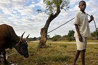 Farm labourer in a small village.