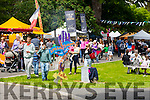 The  Feile na mBlath Park Festival in Tralee Town Park  on Saturday