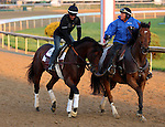 May 07, 2015 Firing Line, second in the the 2015 Kentucky Derby, is ponied by Perfect Drift (Monnie Goetz), who finished third in the Kentucky Derby in 2002.  Perfect Drift was a mulitple graded stakes winner who earned $4.7M in his lifetime.  Firiing Line is pointed toward the Preakness at Pimlico for owner Arnold Zetcher and trainer Simon Callaghan.  ©Mary M. Meek/ESW/CSM