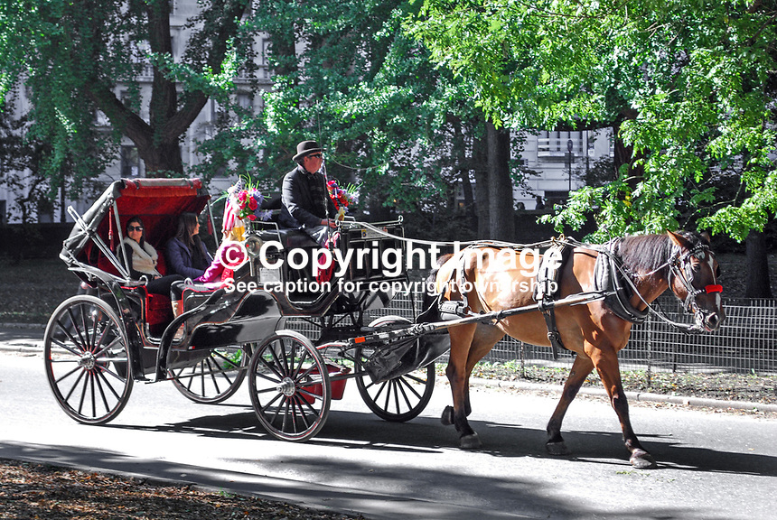 Traditional horse and carriage ride through Central Park, New York, USA, 201110225448...Copyright Image from Victor Patterson, 54 Dorchester Park, Belfast, United Kingdom, UK...For my Terms and Conditions of Use go to http://www.victorpatterson.com/Victor_Patterson/Terms_%26_Conditions.html